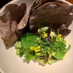 Herb Guac blue tostada